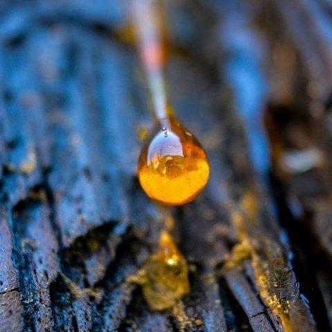Amber olie (styrax)