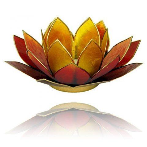 Lotus sfeerlicht 3-kleurig goudrand