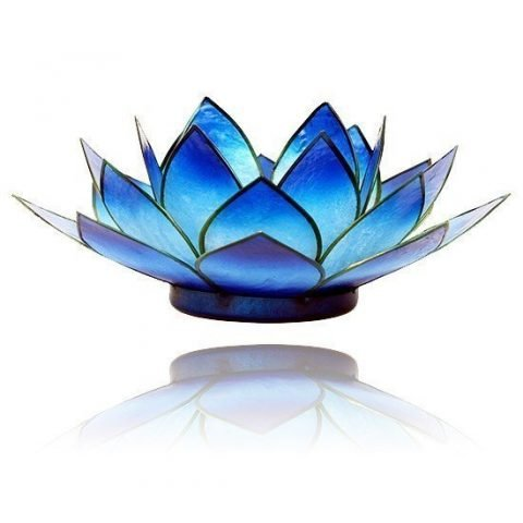 Lotus sfeerlicht blauw 2-kleurig