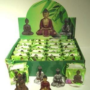Boeddha in tasje