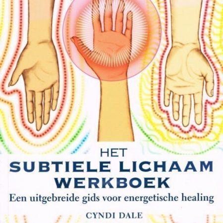 Het subtiele lichaam werkboek